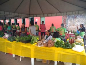 Feira Agricultura
