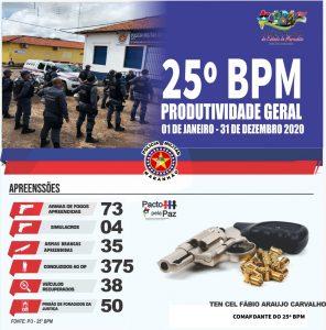 25 BPM faz apreensão de armas