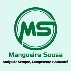Mangueira Souza Conheça sua história e trabalho.